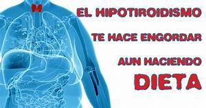 El hipotiroidismo te hace engordar aún haciendo dieta El Blog de la Obesidad