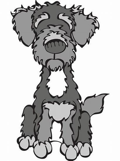Schnoodle Dog Schnauzer Poodle Clipart Cartoon Labradoodle