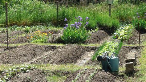 Travaux Au Jardin Potager Bio En Septembre  Le Jardin