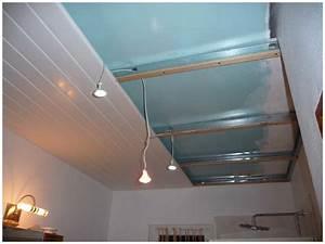 pose d39un faux plafond en pvc maison travaux With porte d entrée alu avec lampe chauffante salle de bain au plafond