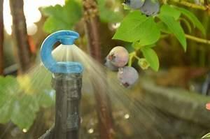 Pflanzen Automatisch Bewässern : 30 besten bew sserung geniale ideen bilder auf pinterest hochwertig leitungswasser und pflanzen ~ Frokenaadalensverden.com Haus und Dekorationen