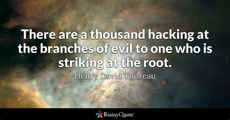 thousand hacking   branches  evil