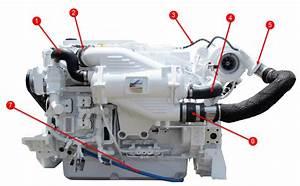 Qsb 6 7 Engine Hoses
