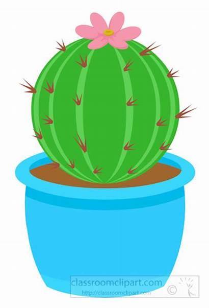Cactus Clipart Round Barrel Clip Planter Desert