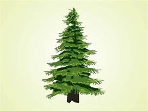evergreen tree vector vector graphics freevector