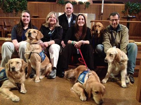 golden comfort like counselors comfort dogs deployed after