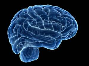 5 Brain Exercises to Strengthen Your Mind  Mind