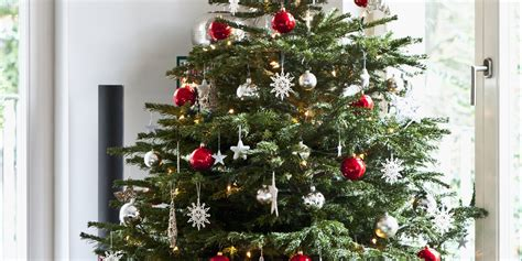 best care for real christmas tree how to care for a real tree huffpost