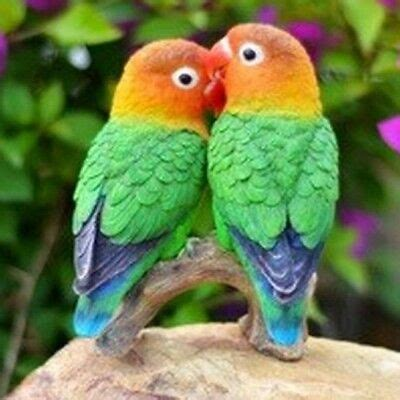 PARROTS ON BRANCH (LOVE BIRDS)- Realistic Life Like ...