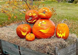 20, Most, Unique, Pumpkin, Carving, Ideas, For, Halloween, Decorating