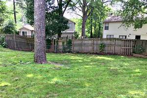 Back Yard • Ugly Duckling House