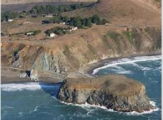 Discover Sonoma County's Marine Wildlife at Goat Rock