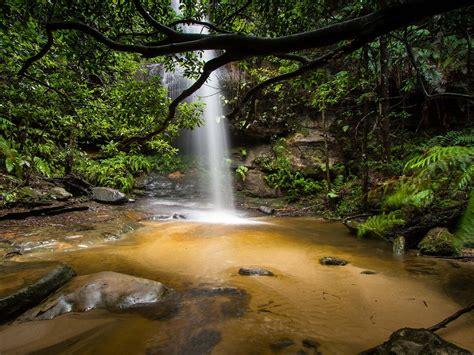 beautiful waterfall deep   jungle adeline falls south