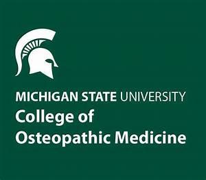 MSU Introduces Kids to Medicine