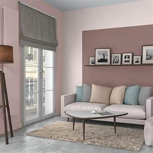 Salon Gris Et Rose : brun beige des couleurs douces sur vos murs leroy merlin ~ Melissatoandfro.com Idées de Décoration