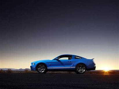 Shelby Mustang Gt500 Ford Wallpapers Backgrounds