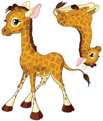 stickers chambre bébé jungle stickers bb girafe garon vente stickers animaux de la
