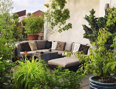 how to decorate the patio with plants
