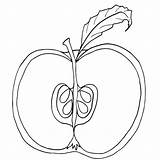 Apple Coloring Pages Parts Fruit Colouring Tree Core Clipart Printable Chart Worksheet Cut Apples Clip Cross Worksheets Section Labeling Getcolorings sketch template