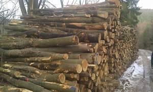 Bois De Chauffage Bricoman : hetre bois de chauffage ~ Dailycaller-alerts.com Idées de Décoration
