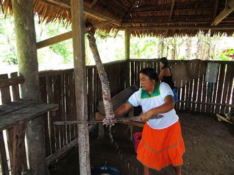 comment cuisiner le manioc dcouverte de l 39 amazonie en quateur
