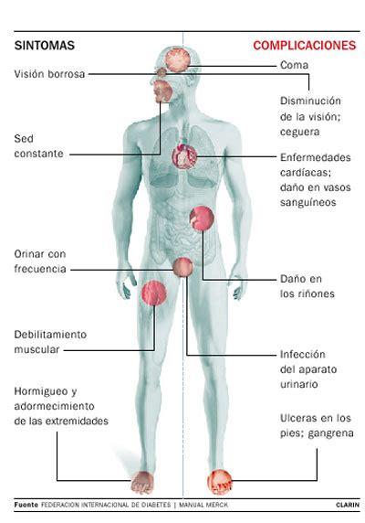 equipo medico nutricional dra ana adames dra esther