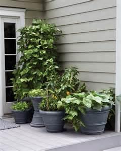 small space garden ideas martha stewart