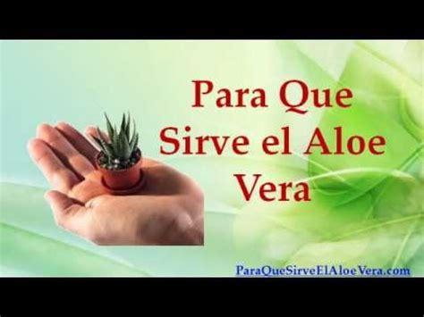 Para Que Sirve el Aloe Vera YouTube