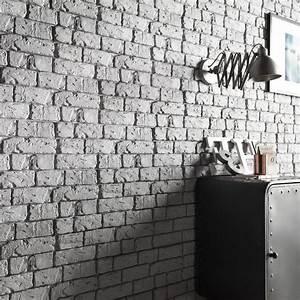 Plaquette De Parement Brico Depot : parement gris avec leroy merlin brico depot ~ Dailycaller-alerts.com Idées de Décoration