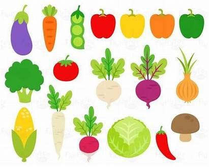Clip Clipart Vegetables Veggies Cabbage Fiber Carrot