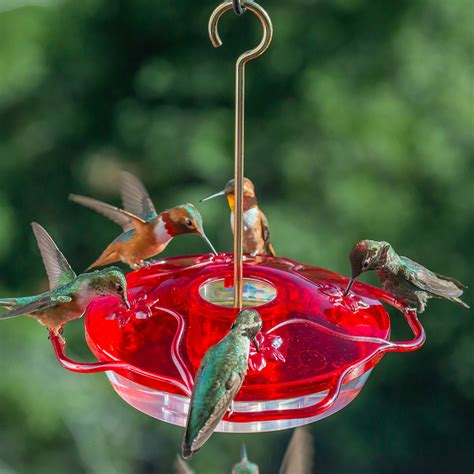 small hummingbird feeders