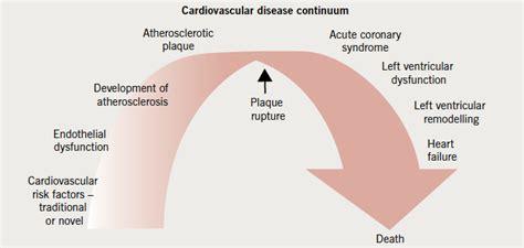 Omega-3 fatty acids in cardiovascular disease: re ...