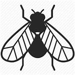 Insect Bug Insects Pest Bugs Icon Fly