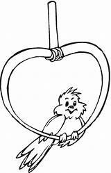 Canary Coloring Pages Animal Animals sketch template