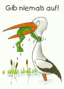 Frosch Bilder Lustig : 10 best ideen zu frosch zitate auf pinterest disney zitate disney spr che und disney ~ Whattoseeinmadrid.com Haus und Dekorationen