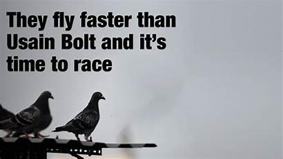 Usain Bolt Kamini Mathai