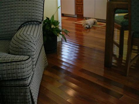 hardwood floor water damage cupping wood floors
