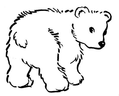 black bear coloring pages  bestofcoloringcom