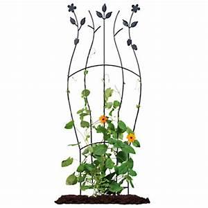 Treillage Plante Grimpante : treillis pour plante grimpante ~ Dode.kayakingforconservation.com Idées de Décoration