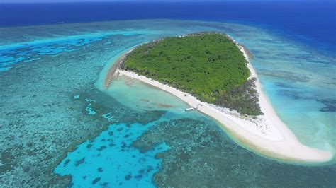 GREAT BARRIER REEF | FACTS AND FIGURES | AUSTRALIA