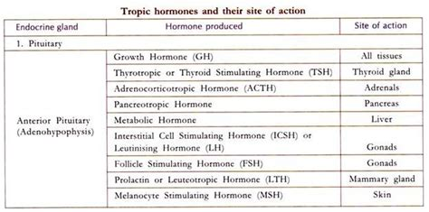endocrine glands and the hormones produced by it