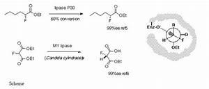 J   Chem  Soc   Perkin Trans 2  1994  3
