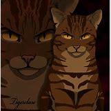 Warriors Cats Crookedstar | 882 x 906 jpeg 93kB