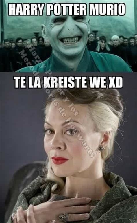 Memes De Harry Potter - 100 memes de harry potter tan m 225 gicos que te matar 225 n de risa harry potter and harry potter memes