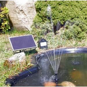 Fontaine Solaire Pour Bassin : pompe fontaine solaire de bassin batterie et led rgb 250l ~ Dailycaller-alerts.com Idées de Décoration