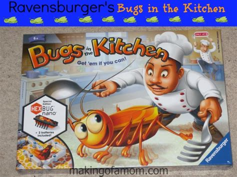bugs in the kitchen catching bugs as a family with ravensburger s bugs in the