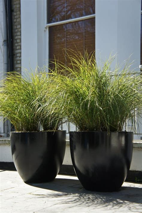 contemporary pot plants artificial potted grass plant gardens terrace and planters