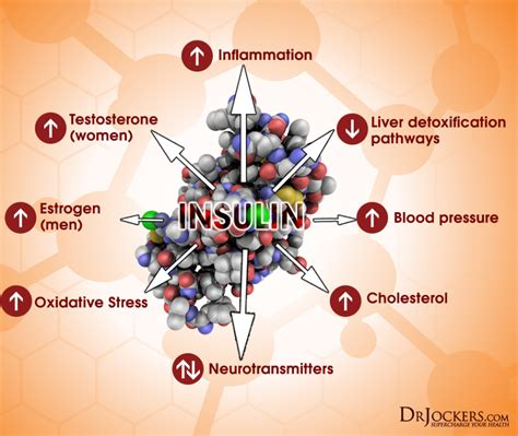 top  blood tests  inflammation drjockerscom