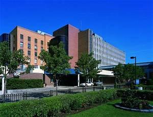 MSU College of Osteopathic Medicine - College of ...