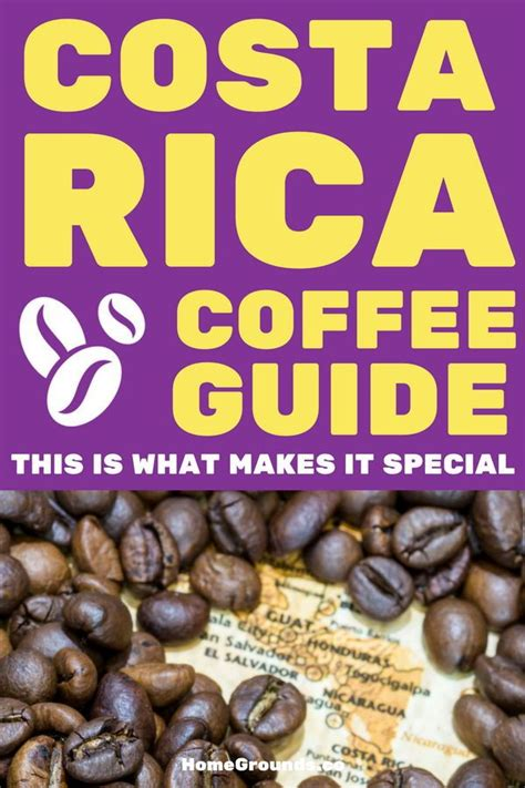 4.3 morning hills coffee, costa rica la rosa green unroasted coffee beans. Best Costa Rican Coffee Buying, Brewing and Roasting Advice | Coffee health benefits, Types of ...